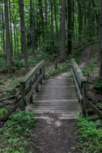 Hiking Ontario, Glen Haffy Conservation Area, Thing to do in Ontario, Things to see in caledon,