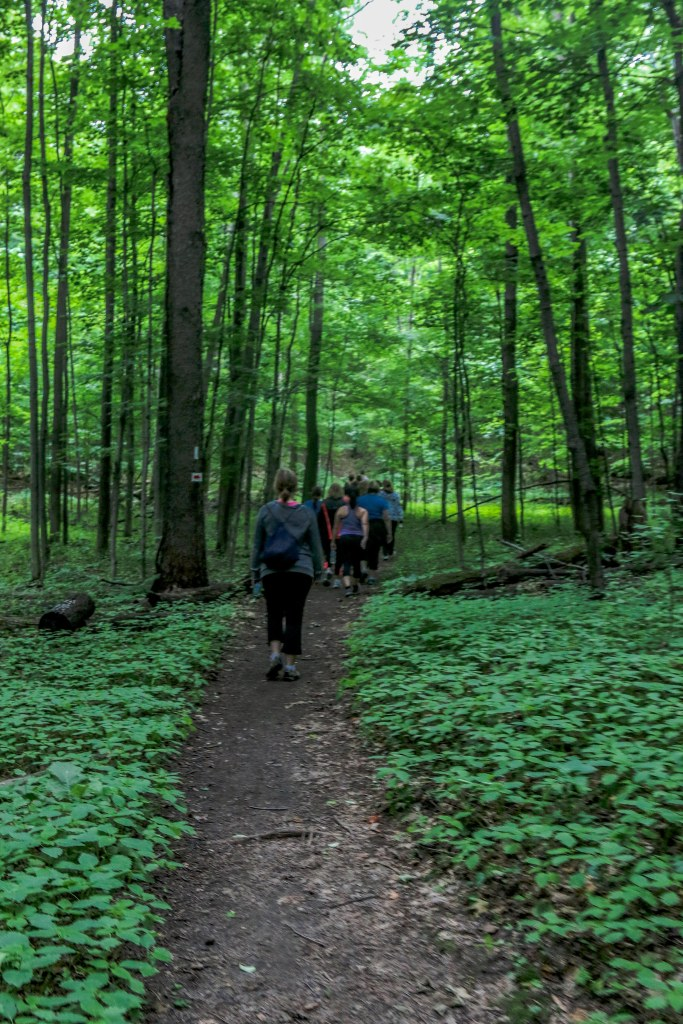 Top Hiking Trails in Ontario, Hiking Ontario, Glen Haffy Conservation Area, Thing to do in Ontario, Things to see in caledon,