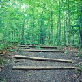 Hiking trails in Ontario, Things to see in Ontario, Beautiful Parks in Ontario, Caledon Hiking,