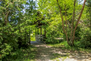 Ontario Hiking Trails, Things to See in Ontario, Caledon Hiking Trails,
