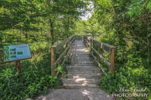 Ontario Hiking,