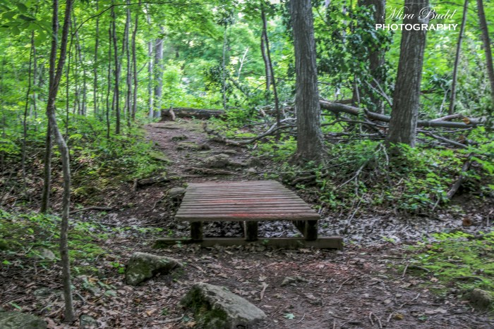 Top Hiking Trails in Ontario,