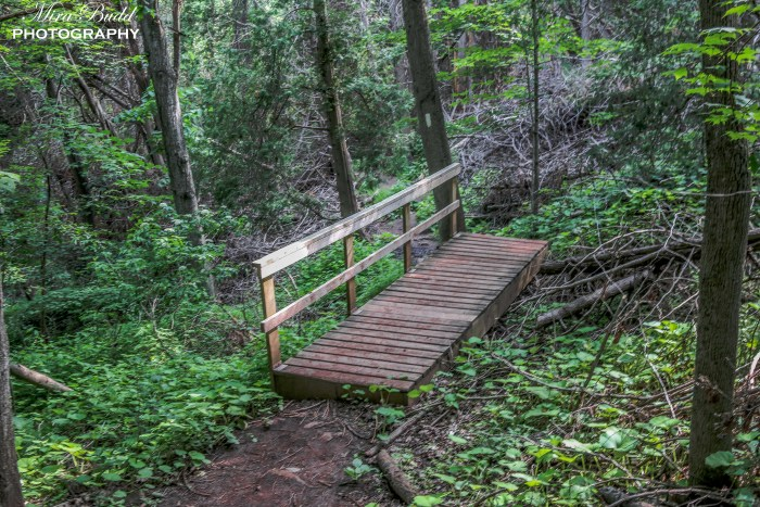 Top Hiking Trails in Ontario, Beautiful Places in Ontario, Things to See in Ontario, The Bruce Trail, Siver Creek Conservation Area