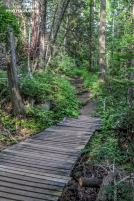Things to See in Halton, Ontario Conservation Areas,