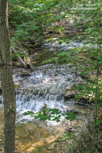 Waterfalls in Ontario, Beautiful Waterfalls In Ontario, Hiking Trails in Ontario, Day Trips Ontario, Best Day Trips Ontario, Hiking with Your Dog in Ontario,