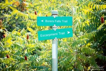 Borer's Falls Conservation Area Hiking Trails