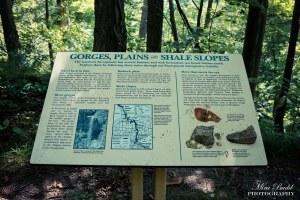 Waterfalls in Ontario, Top Ontario Waterfalls, Best Waterfalls in Ontario, Borer's Falls, Hiking Trails Ontario, Hiking Trails in Hamilton, Things to see in Ontario,