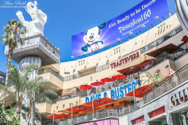 Things to See in Los Angeles, Cities in California, Places to Visit in California, Attractions Los Angeles, Hollywood Blvd,