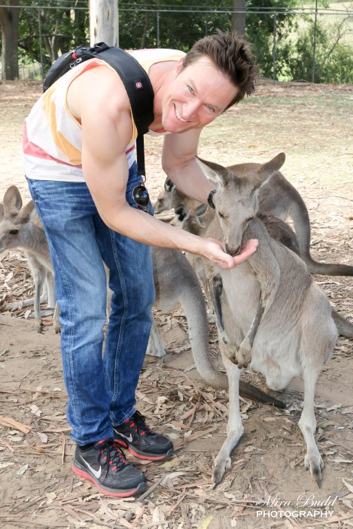 Things to See in Brisbane, Things to see Near Brisbane, Things to do in Brisbane, Things to see in Queensland, Queensland Zoos, Places to see Kangaroos in Australia, Koalas in Brisbane Queensland, Beautiful places in Australia, Australian Zoos, Lone Pine Koala Sanctuary,