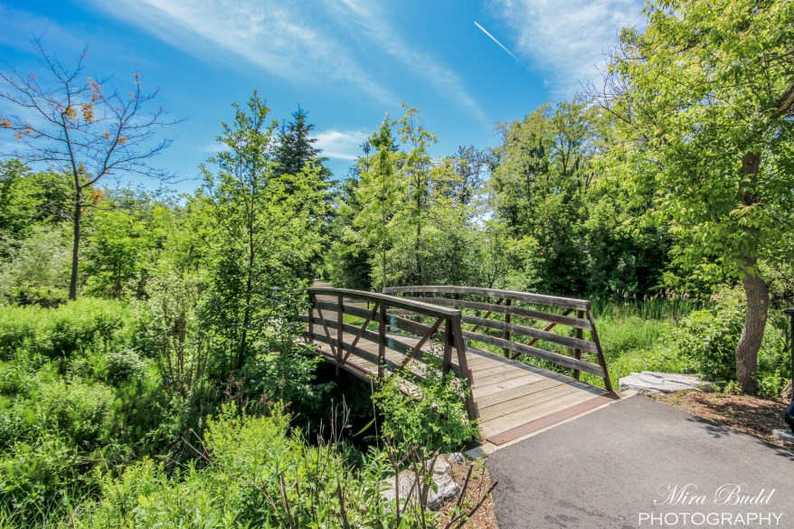 Ontario Hiking Trails, Beautiful Places in Ontario, Caledon Hiking Trails, Things to Do in Caledon,