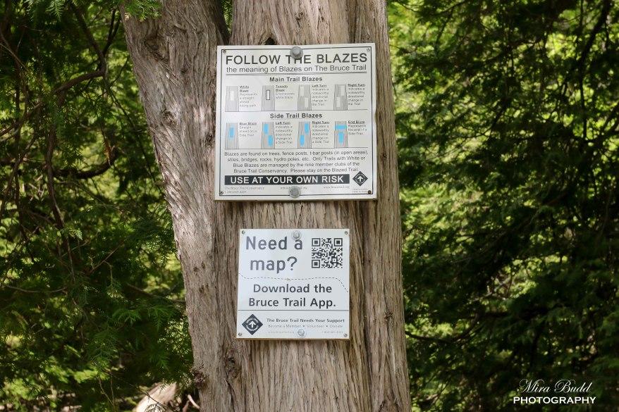Bruce Trail - Trail Blazes