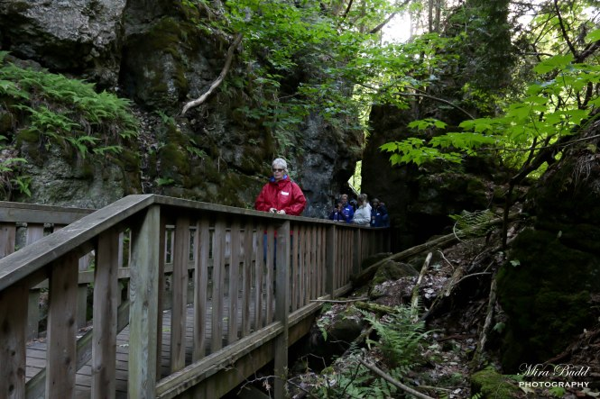 Hiking Trails Ontario, Hiking the Bruce Trail, Beautiful Places in Ontario, Ontario Provincial Parks,