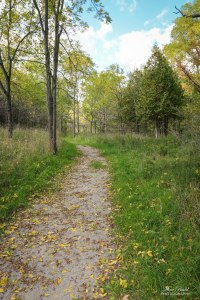 Bruce Trail, Hiking Trails Ontario, Niagara River, Beautiful Places in Ontario, Ontario Hiking Trails,