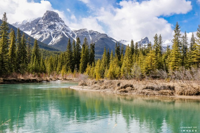 Hiking Banff Alberta, Banff Alberta, Bow Valley Parkway, Things to See in Alberta, Beautiful Places in Alberta,Places to visit in Banff,