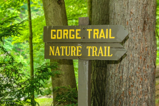 Hiking Trails New York State, Best Camp Sites in New York, Places to Visit in New York, beautiful Places to visit,