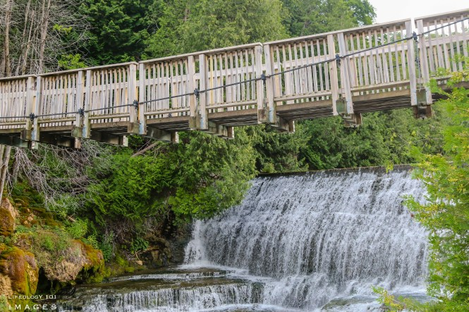 Caledon Waterfalls, Caledon Hiking Trails, Things to Do in Caledon, Belfountain Conservation Area,