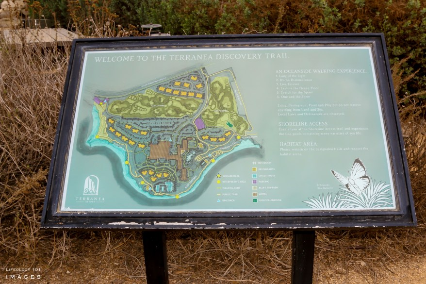 Palos Verdes Peninsula Hiking, Best Hiking Near Los Angeles, Places to Visit Near Los Angeles,