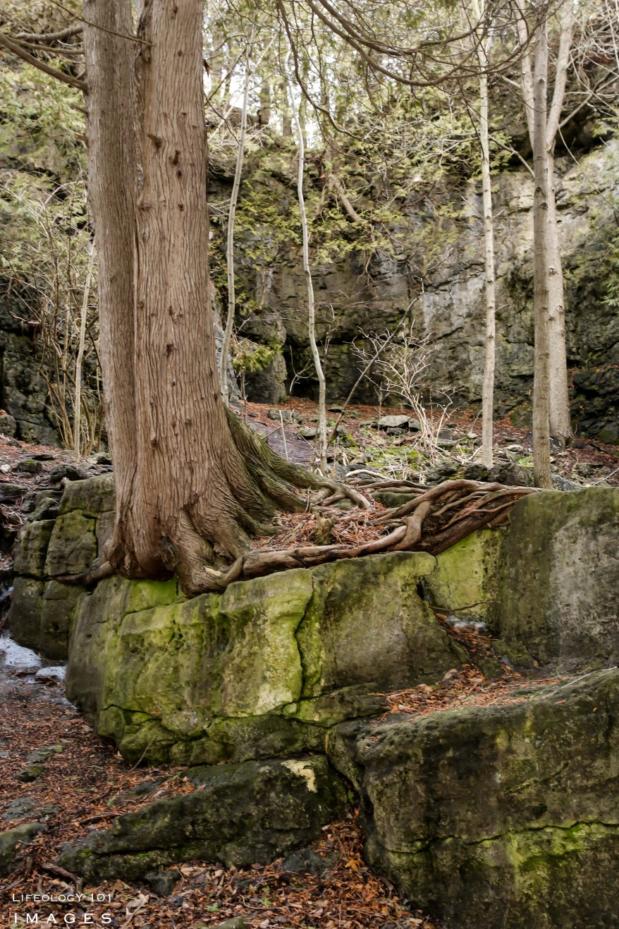 Guelph Hiking Trails, Ontario Caves, Hiking Ontario,