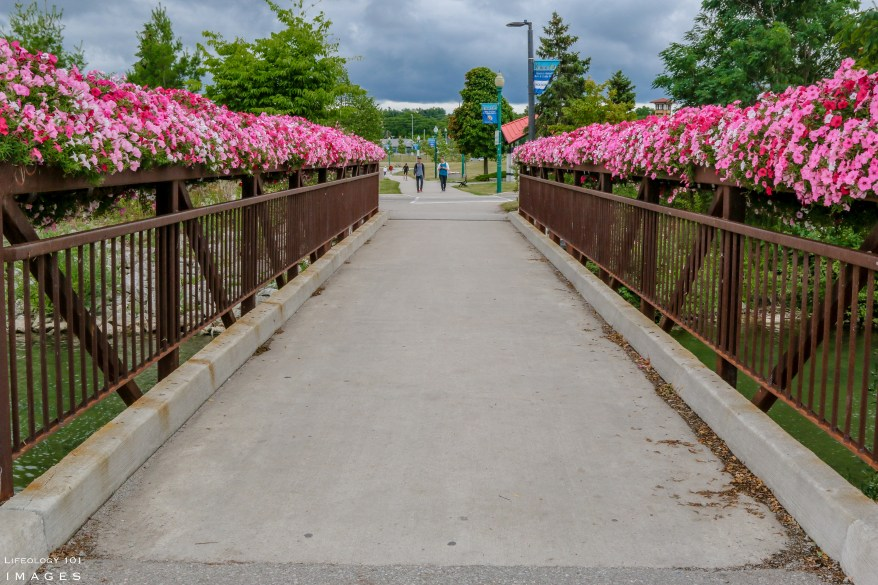Biking Trails Ontario, Hiking trails Ontario, Trans Canada Trail, Beautiful Towns in Ontario,