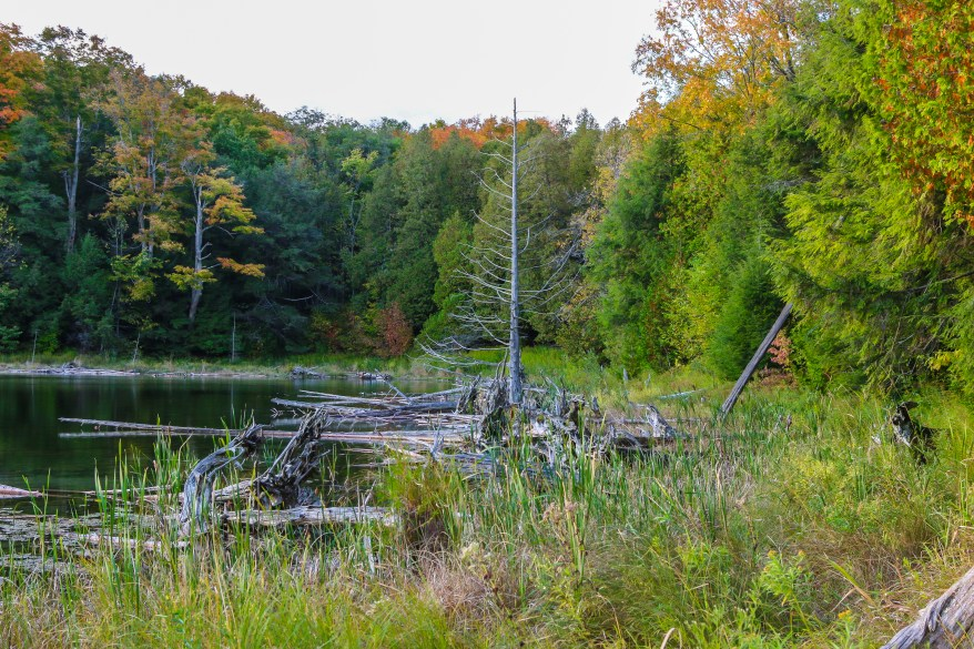 Hiking Trails Ontario, Best hiking trails in Ontario, Bruce Trail,