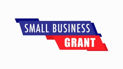 The Ontario Small Business Support Grant