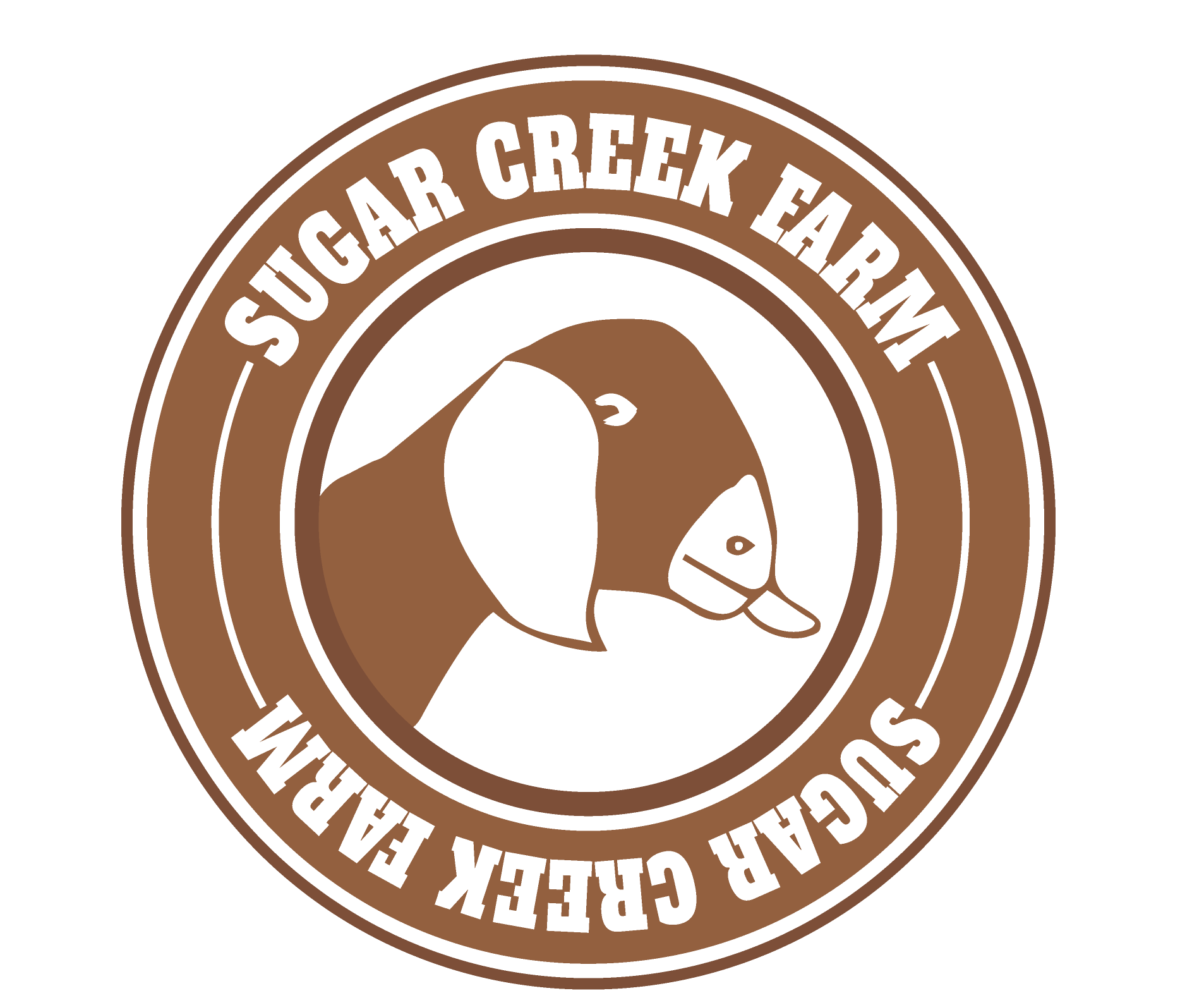 Life On Sugar Creek