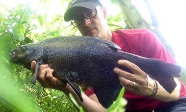 bream fishing old river lee lea