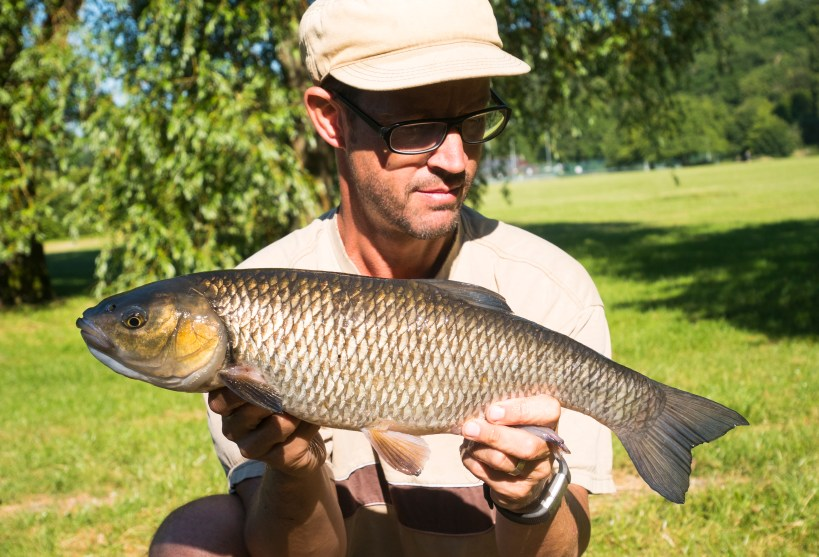 River Lea chub fishing