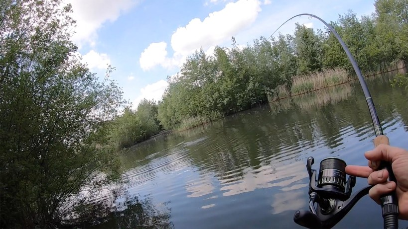 Surface Fishing for Carp