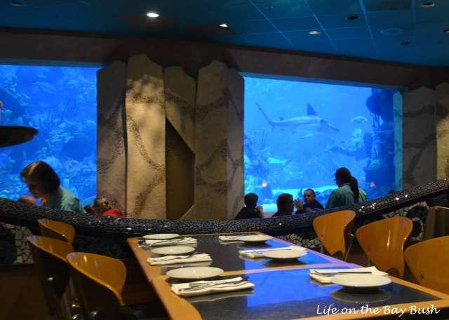 Coral Reef Restaurant Acquarium