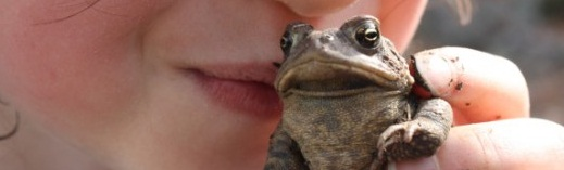 toad kiss