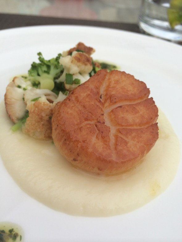 Sweetness from the sea - scallops