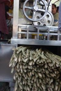 sugar cane juicing