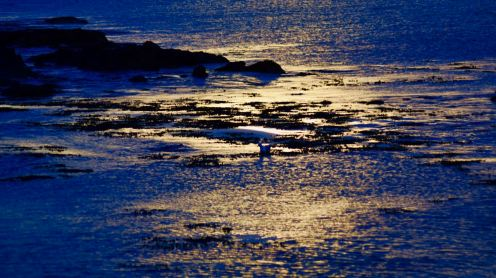 Thursday Evening - Sunset reflected in the waters of Gott Bay