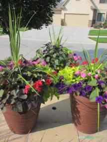 Planting Hydrangeas & Landscaping Ideas Life