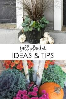 Fall Planter Ideas And Tips - Life Virginia Street