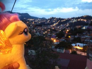 My Little Pony takes in the view from our balcony