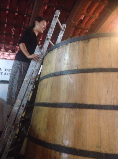 Peering into the barrell!