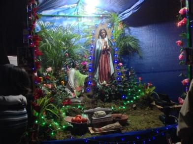 Nativity Scene from Guadalupe celebration