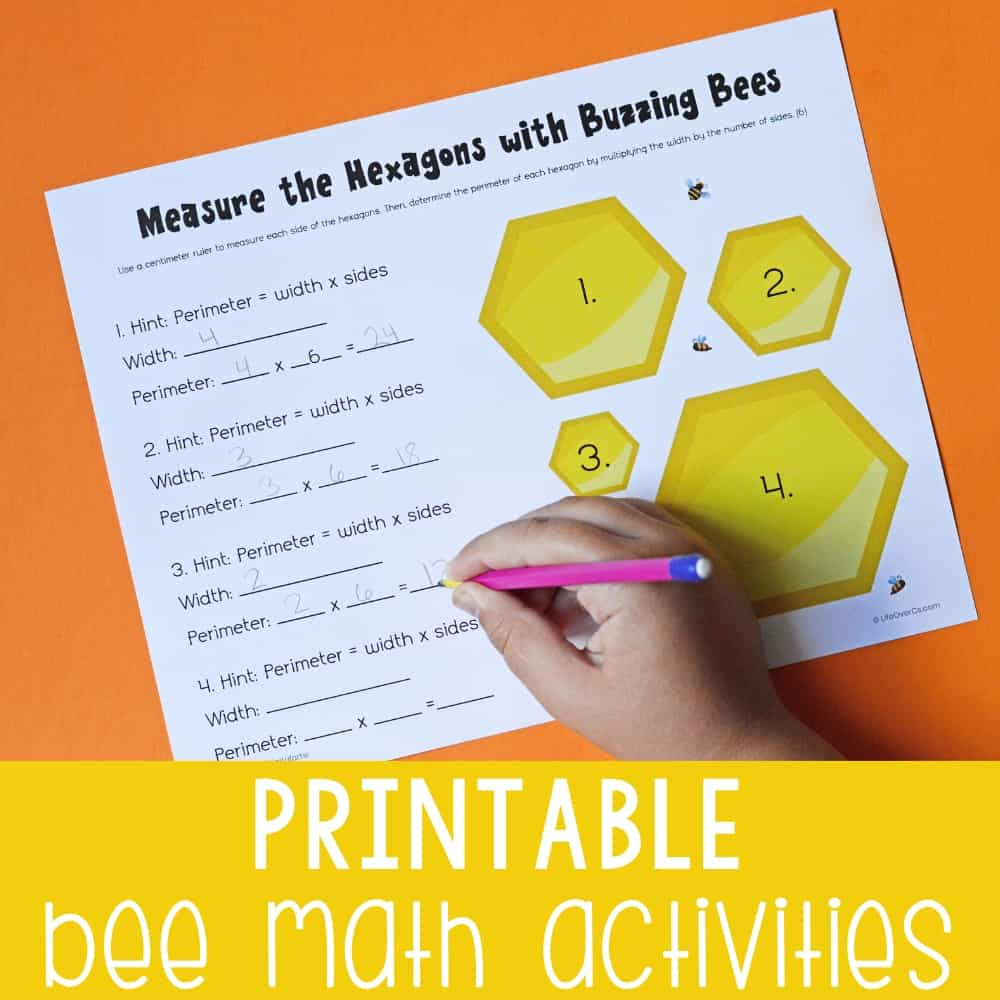 hight resolution of Bee Math Activities for Kids -