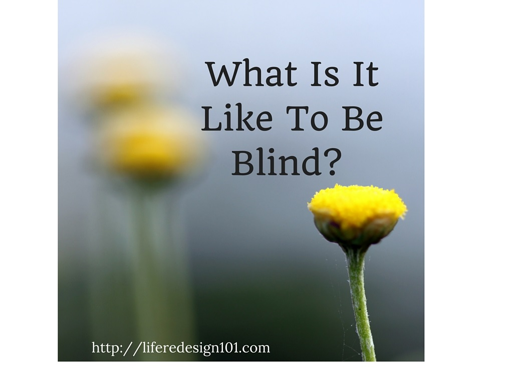 What Is It Like To Be Blind-