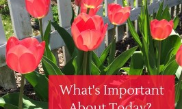 What is Important About Today?