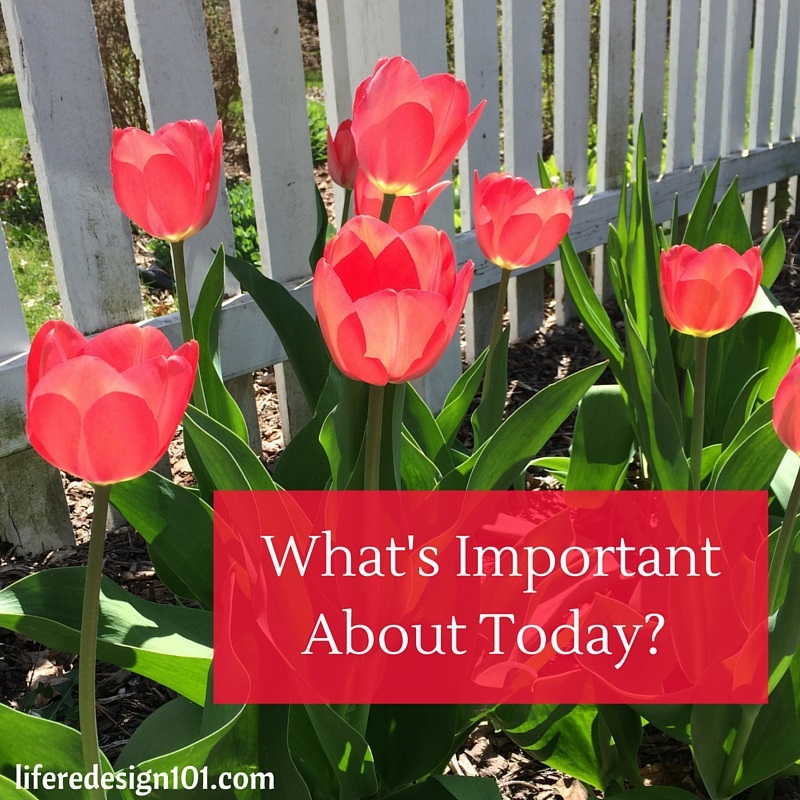 What's Important About Today-