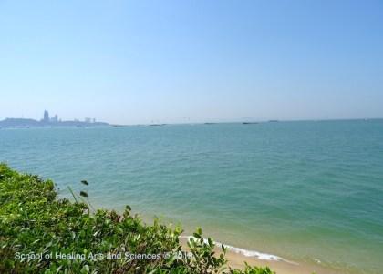 リゾートから見た海