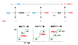 【解決】ポリアクリルアミドゲル電気泳動(SDS-PAGE)について ...