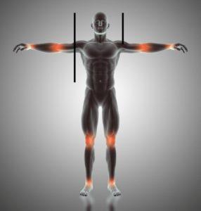 golden ratio in human body