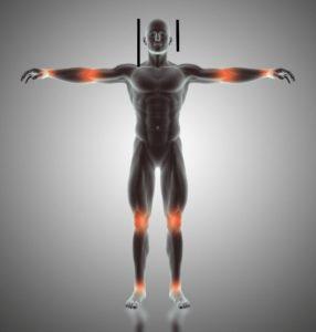 human body, golden ratio