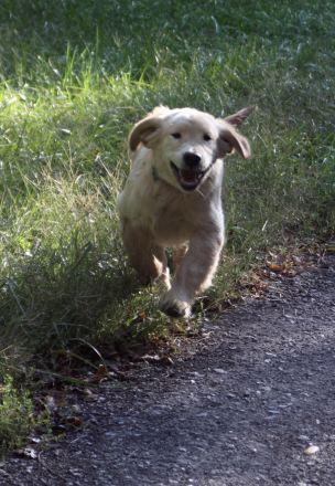 18 Sept 11 Fiona happy