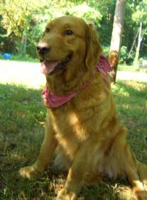 8 July 07 Happy Freyia