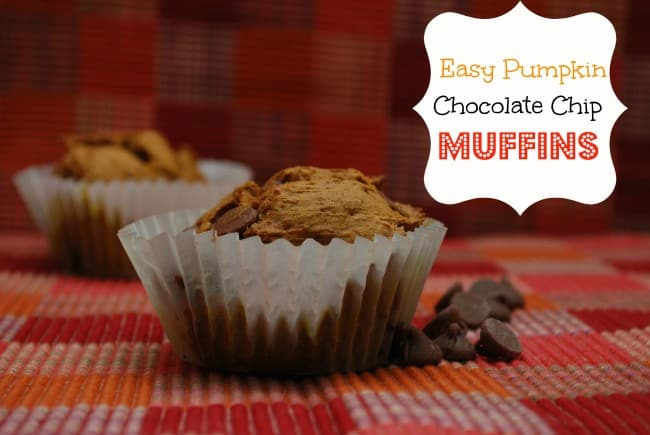 easy-pumpkin-chocolate-chip-muffins-650×435